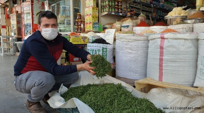 Kilis'te Taze Kekik Bollaştı Ama Fiyatı Aynı Kaldı