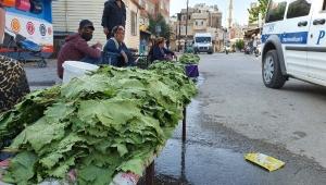 Kilis'te Yaprak Satışları Başladı