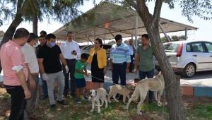 Kilis'te Evcil Hayvanlar İçin Protokol İmzalandı